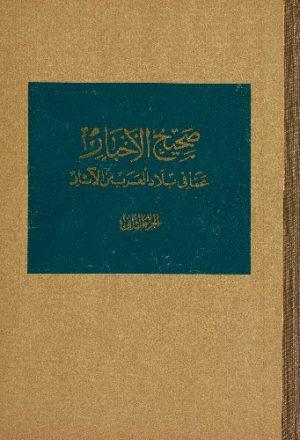 صحيح الاخبار عمّا في بلاد العرب من الآثار v.2