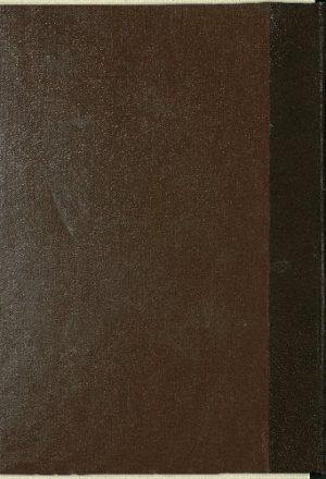 كتاب المبسوط لشمس الدين السرخسي : v.19-20