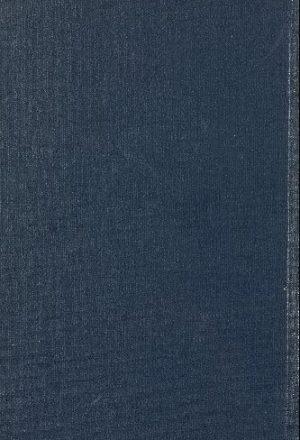 كتاب الاغاني v.13