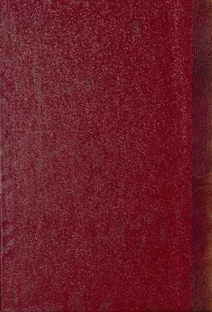 كتاب الفتح الكبير في ضم الزيادة إلى الجامع الصغير v.3