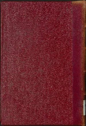 كتاب الفتح الكبير في ضم الزيادة إلى الجامع الصغير v.2