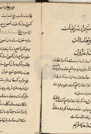 شرعیات فقه فارسی