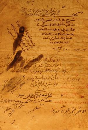 شذور الذهب في معرفة کلام العرب