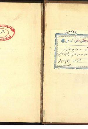 معارج النبوه فی مدارج الفتوه؛معینالدین محمد مسکین فراهی (م907 )