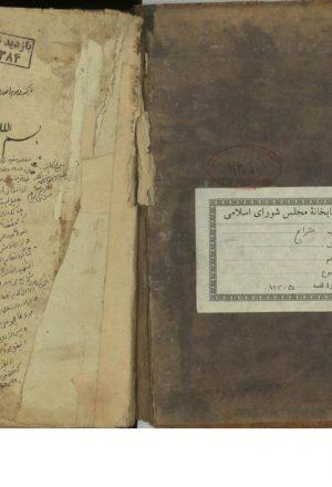 رساله في تحرير كون الزنا نيشر حرمه المصاهره؛سيد محمد تقي (دامغاني گويا) (قرن11 ق)