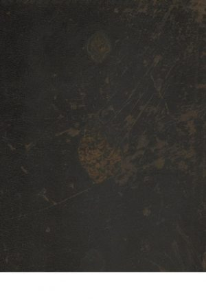 حلیه الموحدین = روضه الواعظین و تبصره المتعظین(مترجم: علی بن حسن زواری (قرن10ق.))