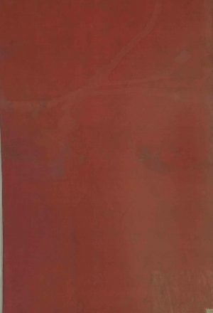 تاریخ سلاطین ساسانی، که طبقه چهارم از ملوک فرس یا پادشاهان عجم بودهاند([محمدحسینبنمحمدمهدی فروغی؟].)