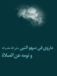 ما روي في سهو النبي ( صلي الله عليه و آله ) و نومه عن الصلاه