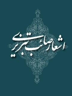 گزیده اشعار صائب تبریزی