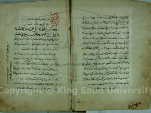 شرح بديعية صفي الدين الحلي750 هـ