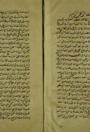 تطهير الجنان واللسان عن الحظور والتفوه بثلب معاوية بن ابي سفيان