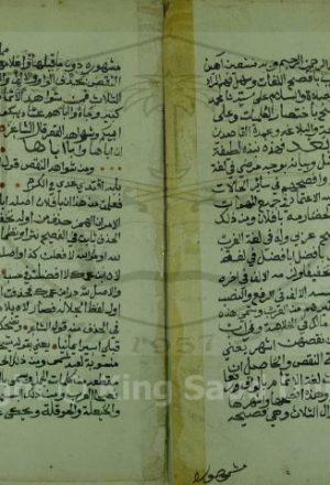 بيان الاصل في لفظ بافضل