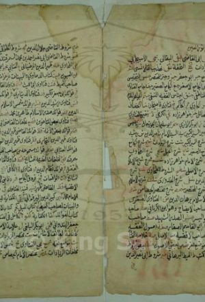 رموز نور العين في اصلاح جامع الفصولين