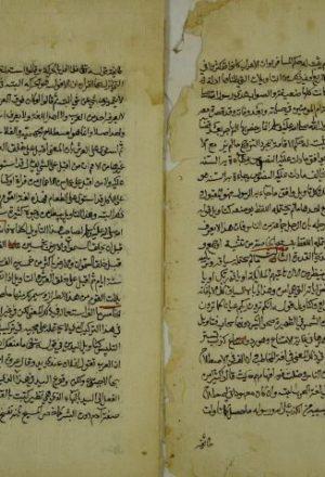 رسالة في اصول الدين (قطعة منها)