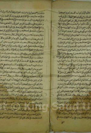 كتاب في تراجم الصحابة وغيرهم