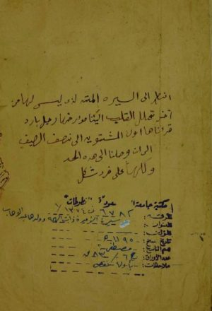 سيرة الأميرة ذات الهمة وولدها الامير عبدالوهاب