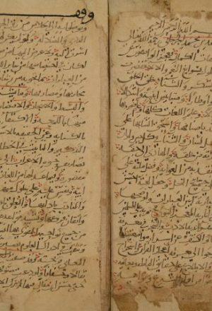 الكنايات لأبي العباس: أحمد بن محمد الجرجاني