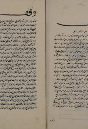 مجموع أوله أنموذج العلوم لمصلح الدين: محمد بن صلاح الدين اللاري