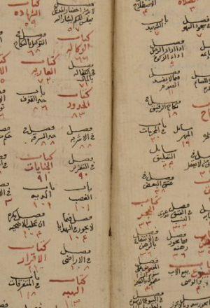 مجموعة منتخبة من المسائل الفقهية، انتخبها عبد الغني أفندي