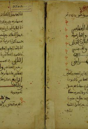 كتاب فيه اسماء العقاقير باليونانية و السريانية و الفارسية و العجمية