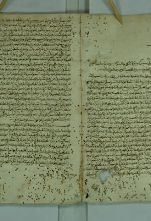 شرح منظومة الجامع لما شرد من المسائل للشاوري ابو الحسن علي