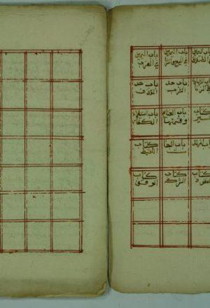 شرح ملتقي الابحر / ابراهيم بن محمد بن ابراهيم الحلبي