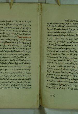 كشف النقاب المجازي عن دالية بن حجازي