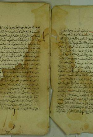 صحيح البخاري = الجامع الصحيح ج10 ، ج11