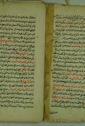 نسيم الرياض شرح لشفاء القاضي عياض ج2