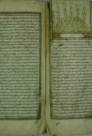 كتاب في التاريخ باللغة التركية