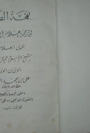 بهجة الصدر في ترجمة علامة العصر جمال الدين علي بن محمد بن يحيى العجري