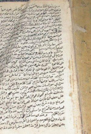 حاشية الشيخ العلامة لطف الله بن محمد الغياث على الشرح الصغير
