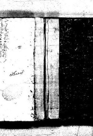 غاية البيان في تدبير بدن الإنسان لصالح بن نصر الله (باللغة التركية)