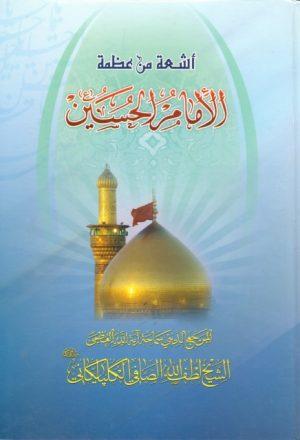 أشعة من عظمة الإمام الحسين عليه السلام
