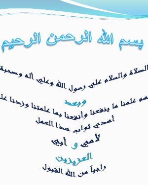 شرح الياهو مسنجر