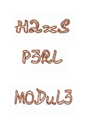 دالة h2xs و مصحح الأخطاء في بيرل Perl