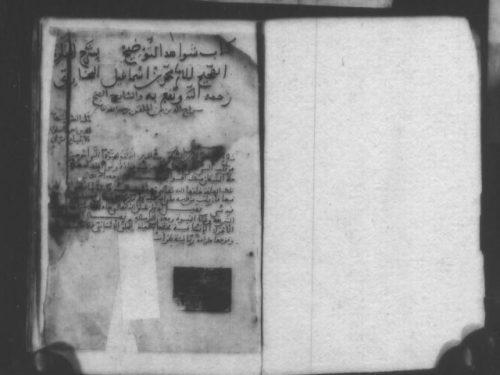 مخطوطة - شواهد التوضيح