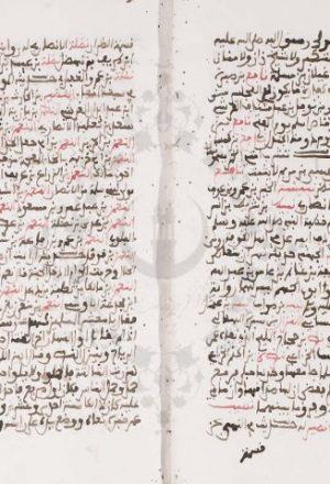 مخطوطة - عين الإصابة  مختصر تمييز الصحابة للسيوطي