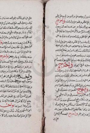 مخطوطة - مارواه الأساطين فى عدم الدخول على السلاطين للسيوطي