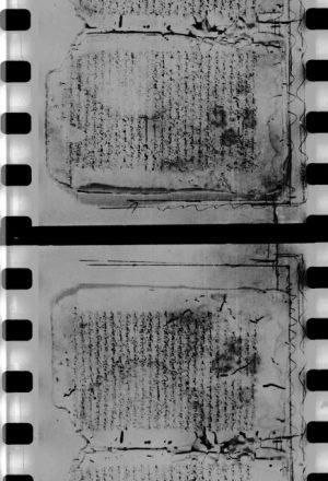 مخطوطة - معجم الصحابة للبغوي