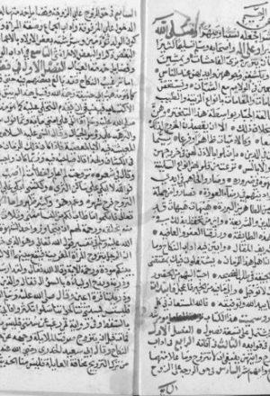 مخطوطة - نزهة المتأمل ومرشد المتأهل فى فضائل النكاح للسيوطي