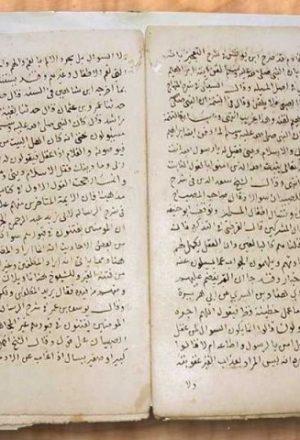 مخطوطة - نسخة أخرى من الاحتفال بالأطفال للسيوطي