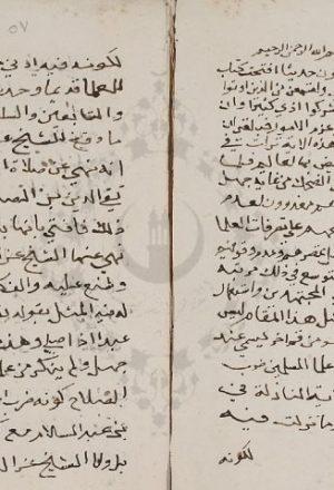 مخطوطة - وقع الأسل فى ضرب المثل للسيوطي