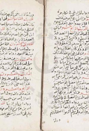 مخطوطة - اربعون حديثا للسيوطي