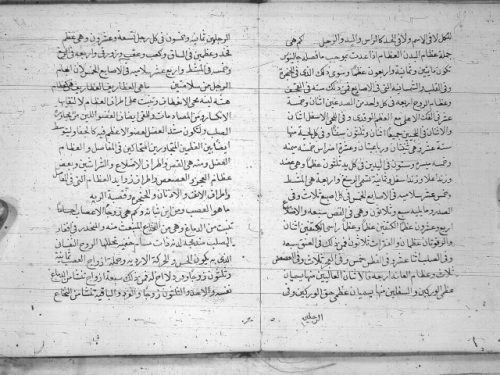مخطوطة - رسالة طبية