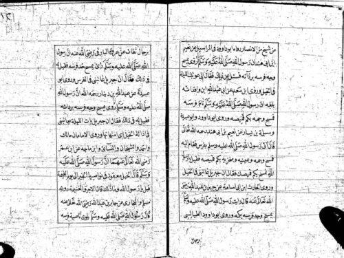 مخطوطة - رسالة فى سياسة الخيل للشامى