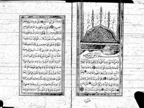 مخطوطة - كتاب فى البيطرة مترجم من الفارسية