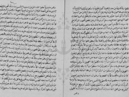 مخطوطة - الأقوال المرضية لنيل المطالب الاخروية فى فقه ابن حنبل للبسيوني