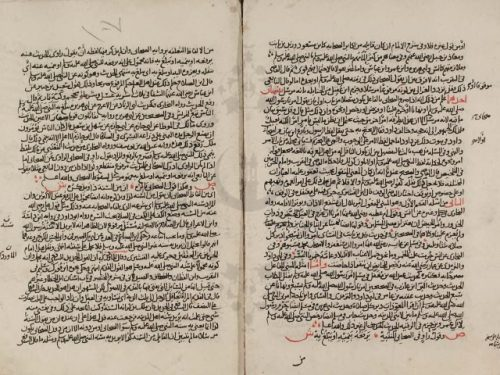 مخطوطة - الفوائد السنية فى شرح الألفية شرح منظومة فى أصول الفقه للبرماوي الشافعي