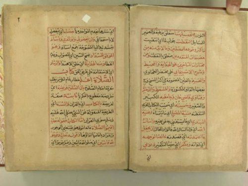 مخطوطة - غنية المتملى